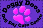 Doggy Doos Dog Day Care Centre